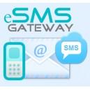 eSMS Gateway